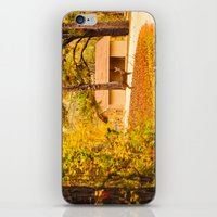 Visitor at the Park iPhone & iPod Skin
