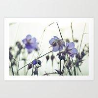 Sunlit Meadow Crane's-bi… Art Print