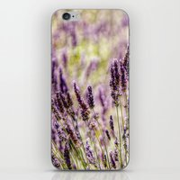 Smell the lavender iPhone & iPod Skin
