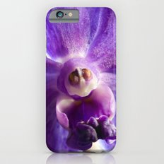 Orchid Vanda 91 iPhone 6 Slim Case