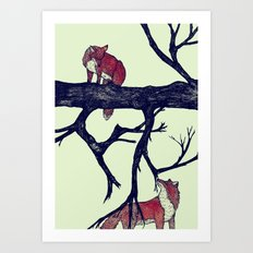 Foxes First Meeting  Art Print