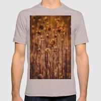 Sunflower Heads in the Winter Sun Mens Fitted Tee Cinder SMALL