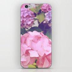 Hydrangeas iPhone & iPod Skin