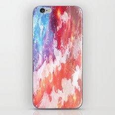 American  iPhone & iPod Skin