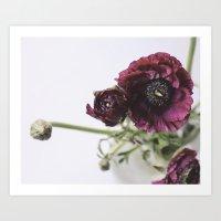 Anemone | Fig. 01 Art Print