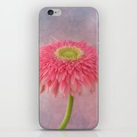 Pink In The Garden iPhone & iPod Skin