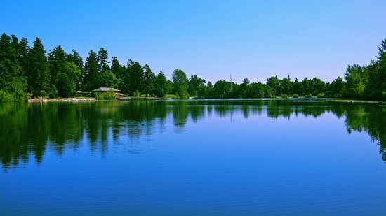 Scenic summer lake Art Print