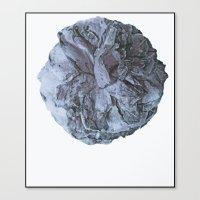 Camellia blu Canvas Print