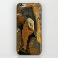 This Old Guy iPhone & iPod Skin