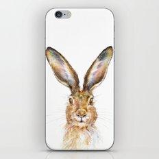 HARE iPhone & iPod Skin