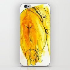 the looked after iPhone & iPod Skin