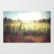 Canvas Print featuring Cornfields by The Last Sparrow
