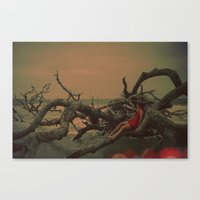 A Delicate Red Shadow Canvas Print