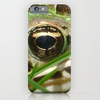 Northern Leopard Frog iPhone 6 Slim Case