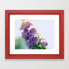 Nature 16 Framed Art Print