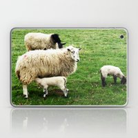 We Like Sheep Laptop & iPad Skin