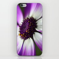 Senetti Macro iPhone & iPod Skin