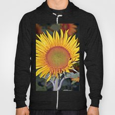 Floating SUN Hoody