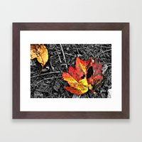 Color Pallette Framed Art Print