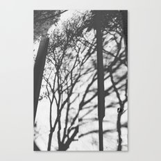 Tree Shadows - Solarized Canvas Print