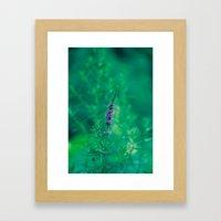 Wildflower 1 Framed Art Print