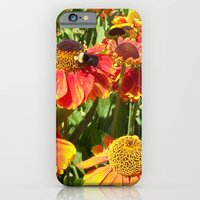 iPhone & iPod Case featuring Sweet as a Bee and Daisies by Allison Baskett