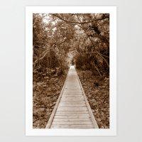 Off The Beaten Path Art Print