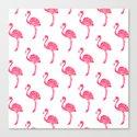 American Flamingo (pink) Canvas Print