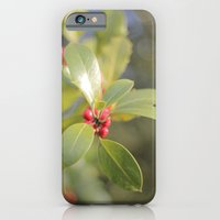 iPhone & iPod Case featuring Autumn Day 2 by SC Photography