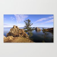 Stone And Pine Canvas Print