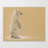Polar Cub Canvas Print