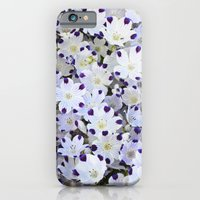 Flower Carpet iPhone 6 Slim Case