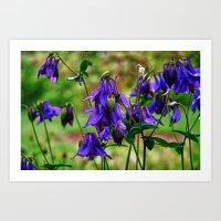 Purple Petals In The Rai… Art Print