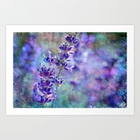 Lavender Grunge Art Print