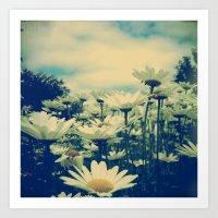 Daisy Love Art Print