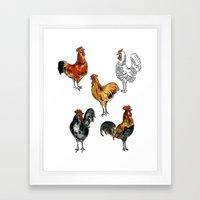 Chicken Breeds Framed Art Print