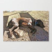 Sleepy Alaska Canvas Print