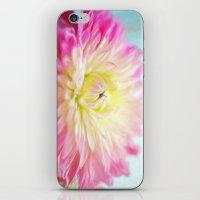 painted dahlia iPhone & iPod Skin