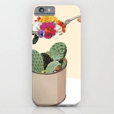 SUCCULENT Slim Case iPhone 6s