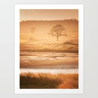 In Autumn Light Art Print