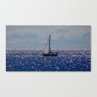 Canvas Print featuring Free by Christophe Chiozzi