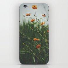 Molecules iPhone & iPod Skin