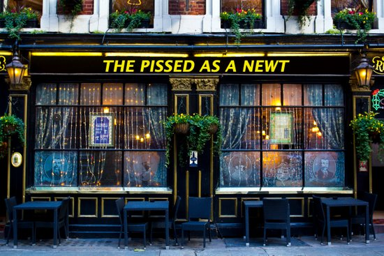 The Pissed as a Newt Pub Art Print