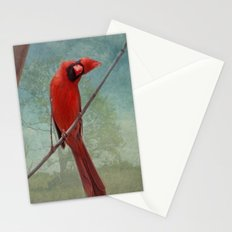 Whatcha Doing? Stationery Cards