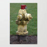 Fire Hydrant Canvas Print