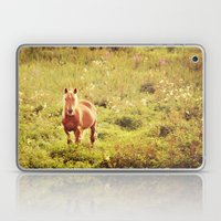 All The Pretty Horses Laptop & iPad Skin
