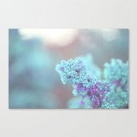 Teal and Purple Canvas Print
