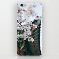 Blossoms Near the Bell, Seoul Korea iPhone & iPod Skin