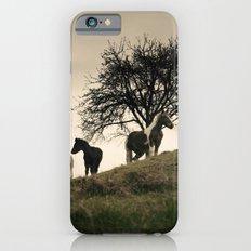 caballos Slim Case iPhone 6s