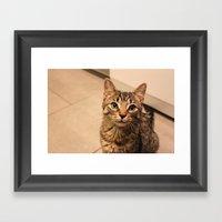 Millie (100% Of Proceeds… Framed Art Print